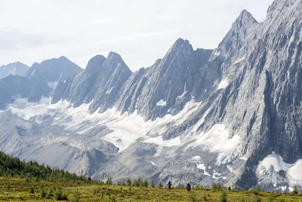 The dramatic 'Rockwall' formation with snow patches rises above a flat grassy plateau, with two hikes in foreground. Photo credit Destination BC Kari Medig