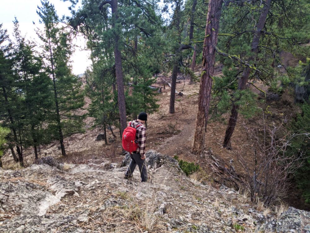 JR descending one of the rocky sections of Pincushion Mountain, wearing a plaid shirt and red backpack, with pine trees in background