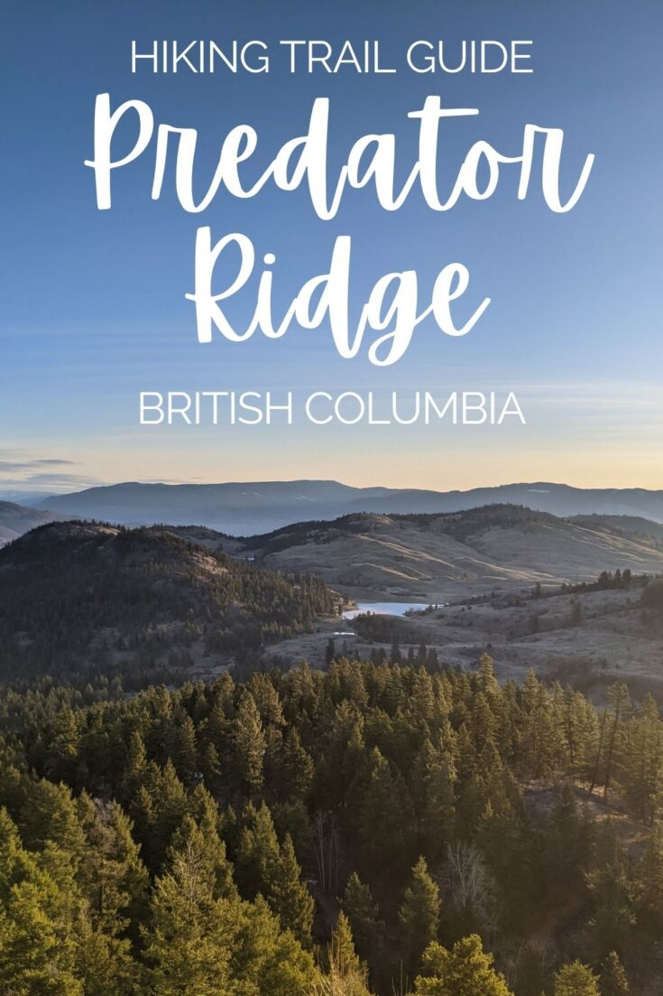 An up and coming hiking destination, Predator Ridge has more than 30km of carefully maintained trails, most with epic views of Okanagan Lake and snow capped mountains. Click here to discover everything you need to know about hiking at Predator Ridge, British Columbia, Canada! offtracktravel.ca