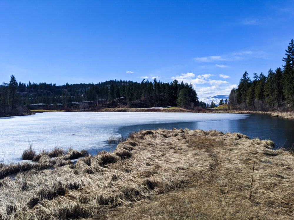 View from the observation platform on Birdie Lake, Predator Ridge. Part of the lake is still frozen and some houses can be seen at the other end of the lake.