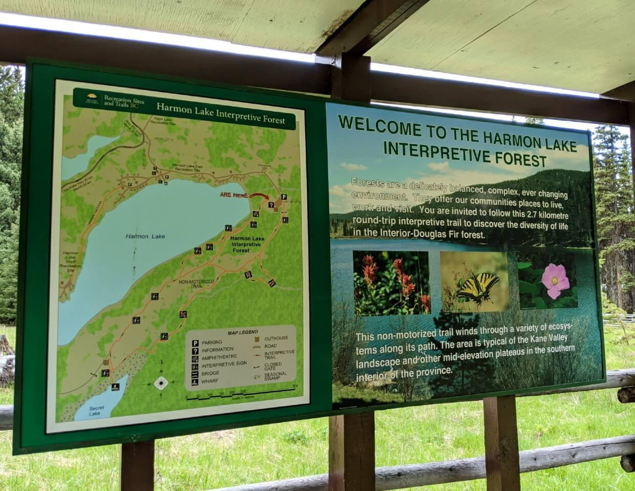 Welcome to Harmon Lake Interpretive Forest signage - there is a map on the left and an introduction on the right