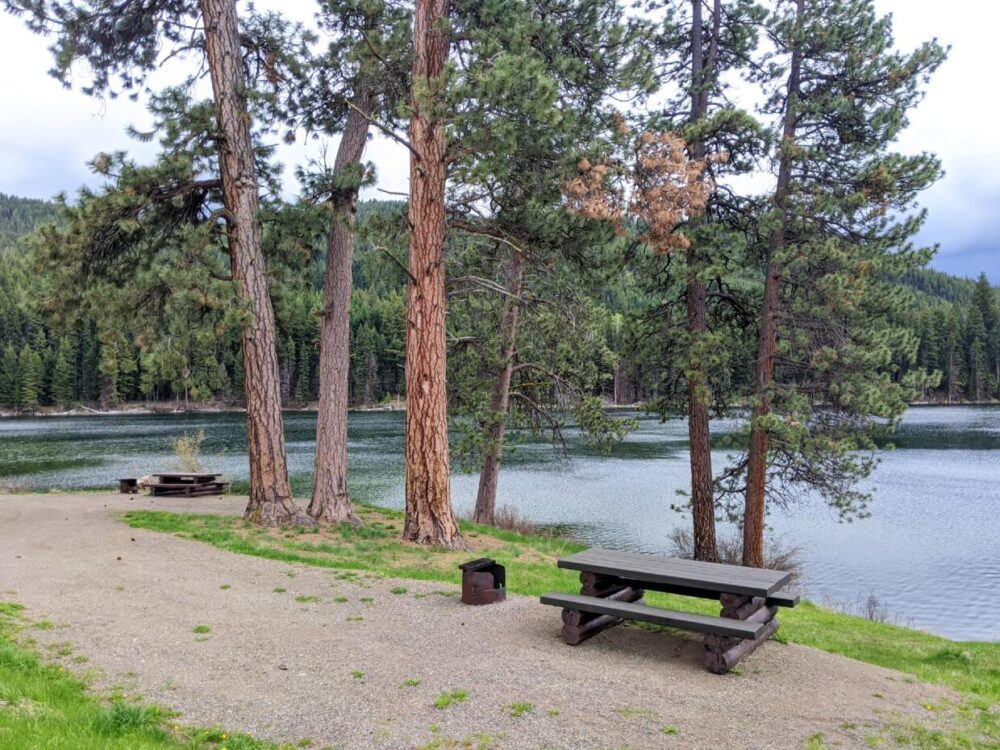 Side view of two lakeside campsites at Harmon Lake Rec Site, both with picnic tables and fire rings. A small cluster of trees separate the two sites