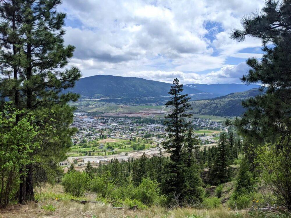 Peek through views of Merritt from Tom Lacey Memorial Trail