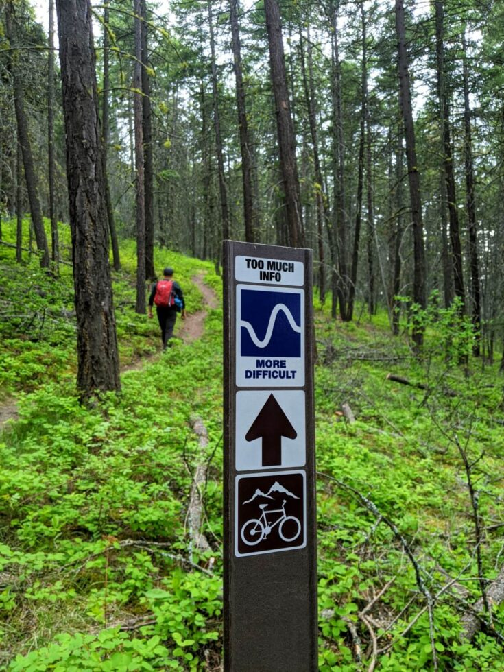 Close up of Too Much Info sign with JR hiking away from camera through forest in background