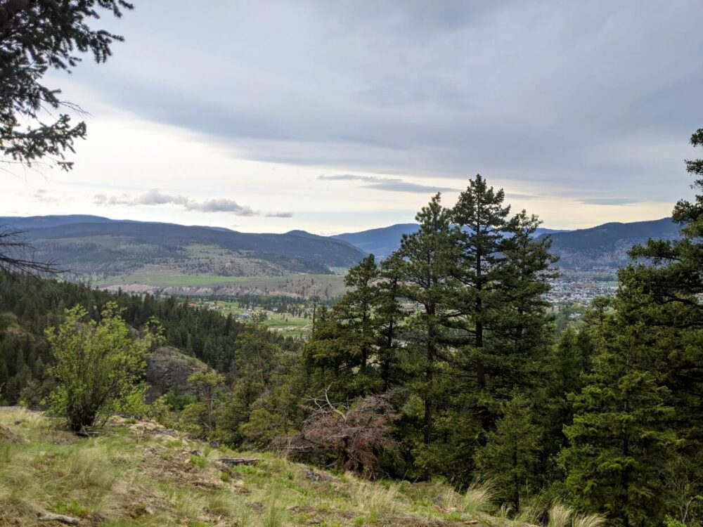 Looking out from the Too Much Info trail towards Merritt, with some trees blocking some of the views