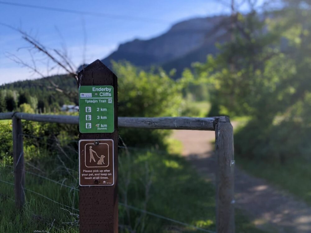 Focus on Tplaqin Trail sign, with trail distances and 'please pick up after your pet' sign. The background is blurred