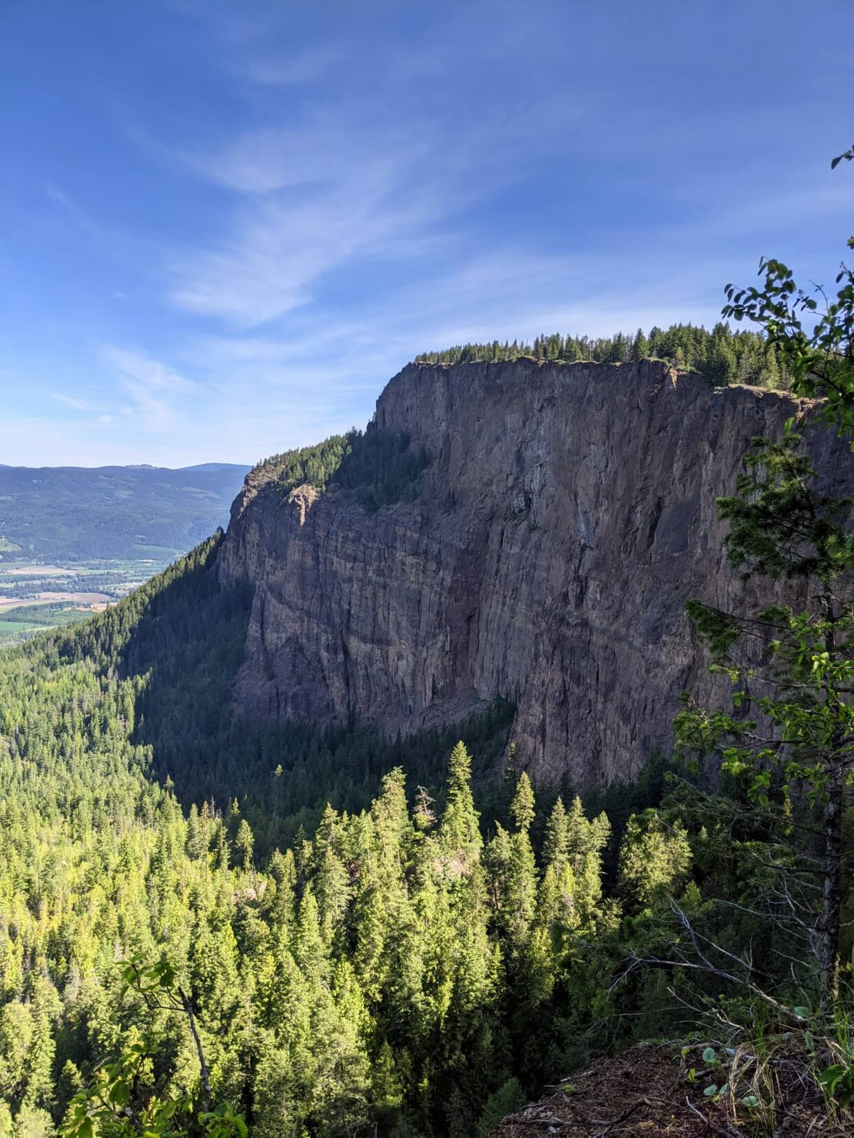 Side view of huge 1200m cliffs rising out of forest, with rolling farmland in background