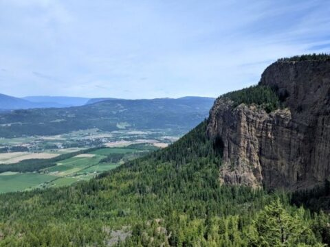 enderby cliffs header