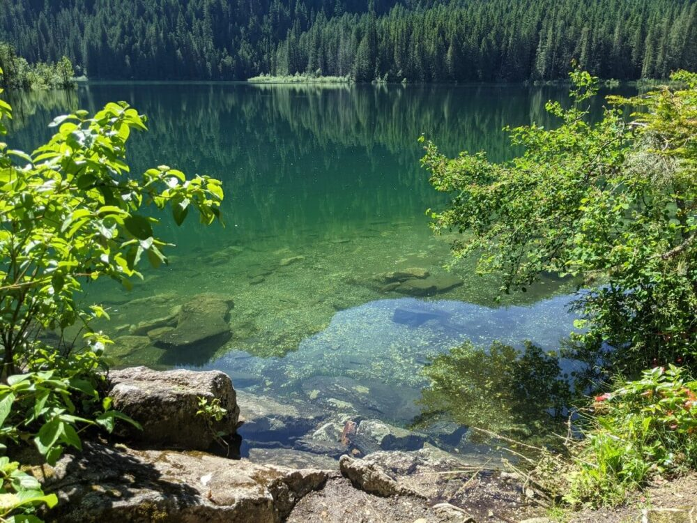 Looking at the water of Spectrum Lake from shore, which is turquoise coloured and very clear. It's possible to see the bottom of the lake