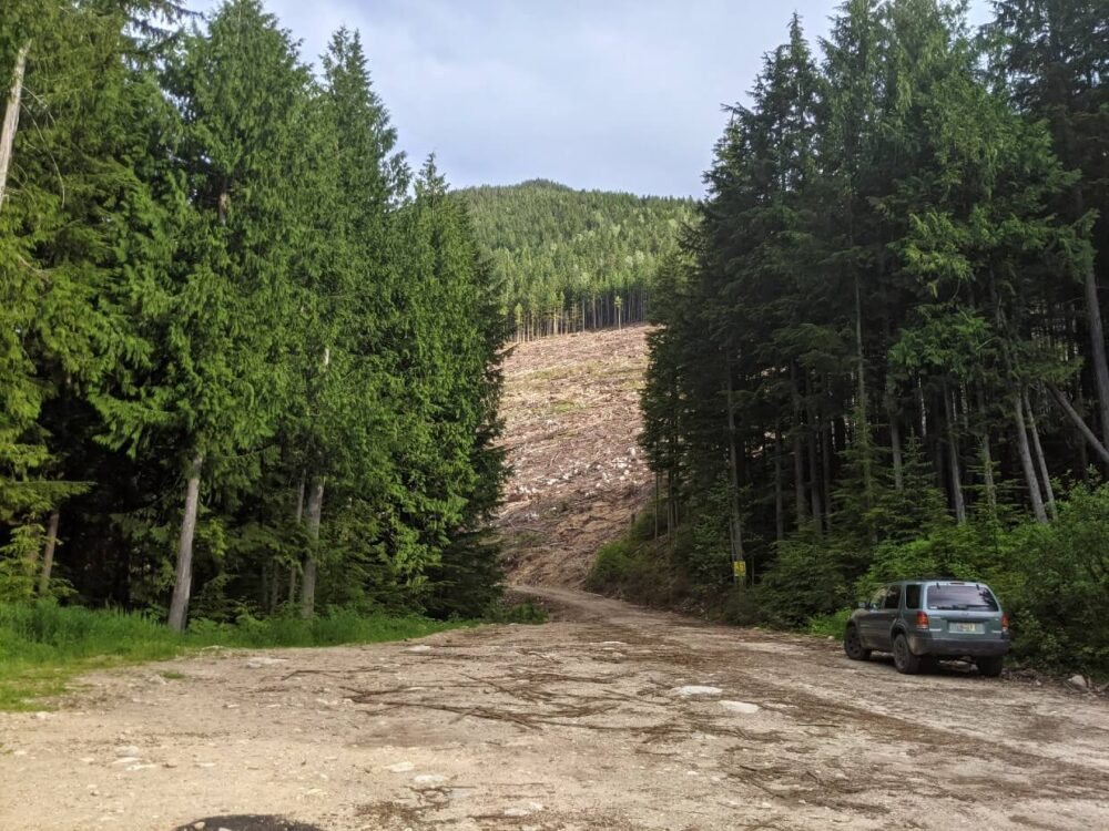Looking across unpaved parking lot with singular vehicle parked on right hand side. The parking lot is surrounded by trees, except for a cutblock (caused by logging) ahead