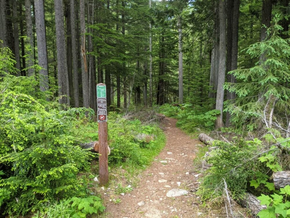 View of start of hiking trail, with dirt path leading through forest. There is a signpost with trail distances on the left.