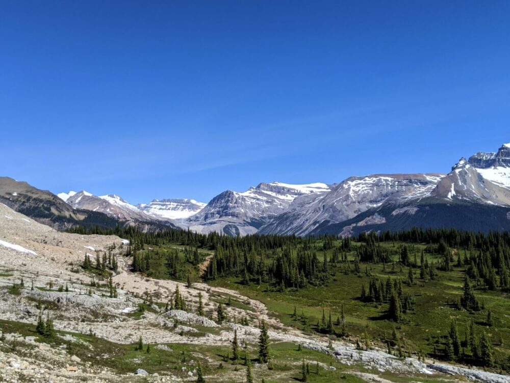 Elevated view looking down at rocky and forest landscape, surrounded by snow capped mountains
