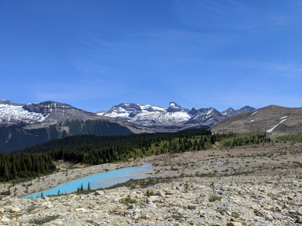Looking from Iceline Trail over to turquoise alpine tarn, in front of forest and mountain range