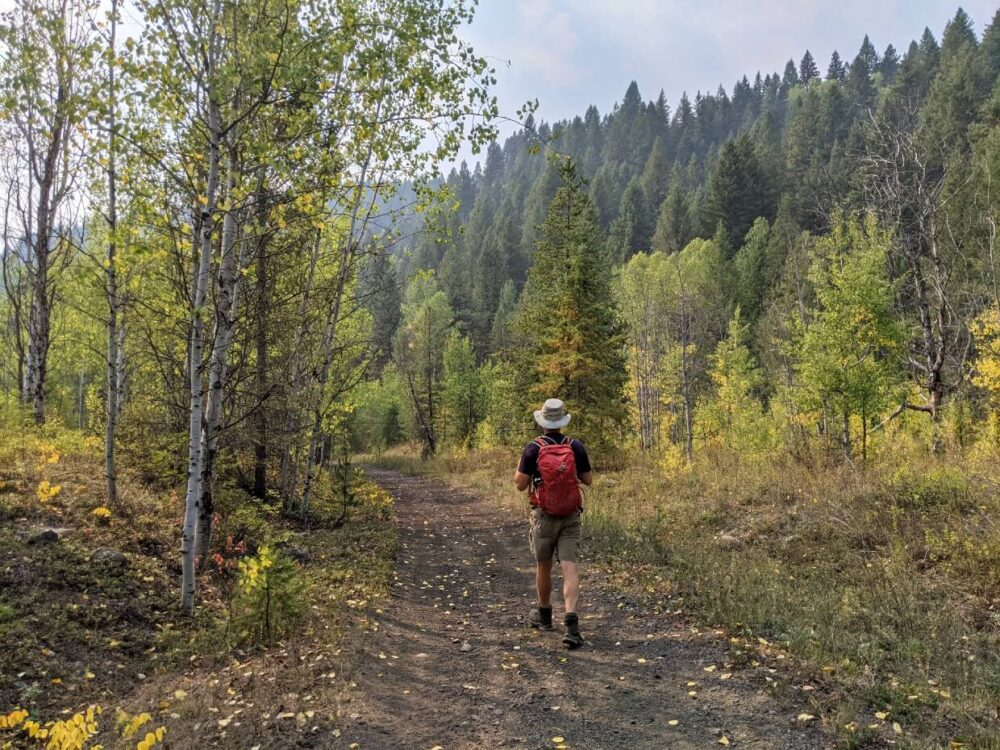 Back view of JR walking on packed Columbia & Western Rail Trail, with red backpack. Some of the trees have changed colour