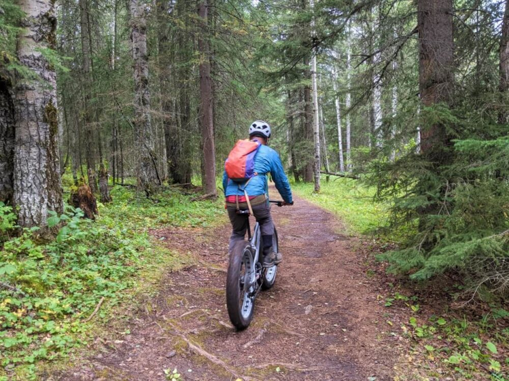JR rides away from the camera on a fat bike, into the forest of Snake Hill Recreation Area