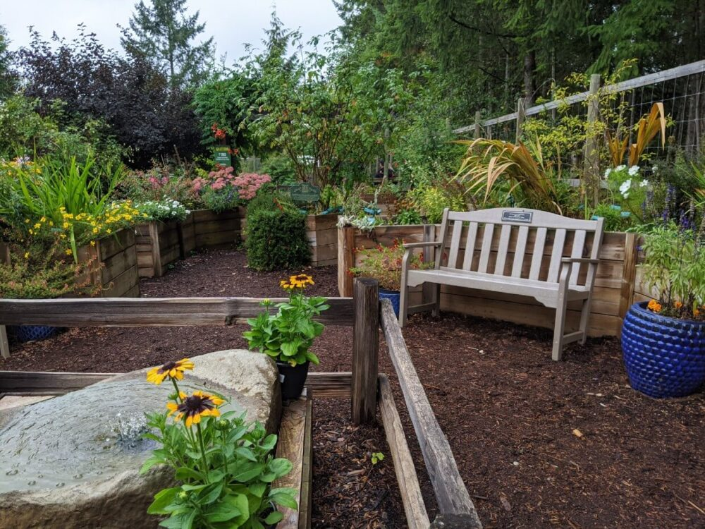 North Island Wildlife Recovery Centre garden with park bench surrounded by flower boxes