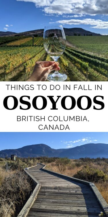 Osoyoos is best known as a summer destination. And it's no wonder - the warm, dry climate and the lake are the perfect combination for a traditional beach vacation. But Osoyoos has a lot more to offer, particularly in fall. Click here to find out more!