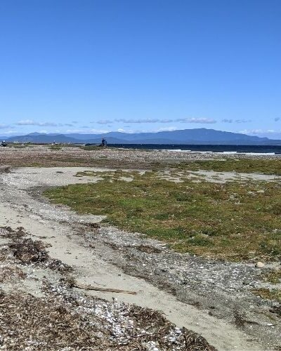 16 Fun Things to Do in Parksville, British Columbia
