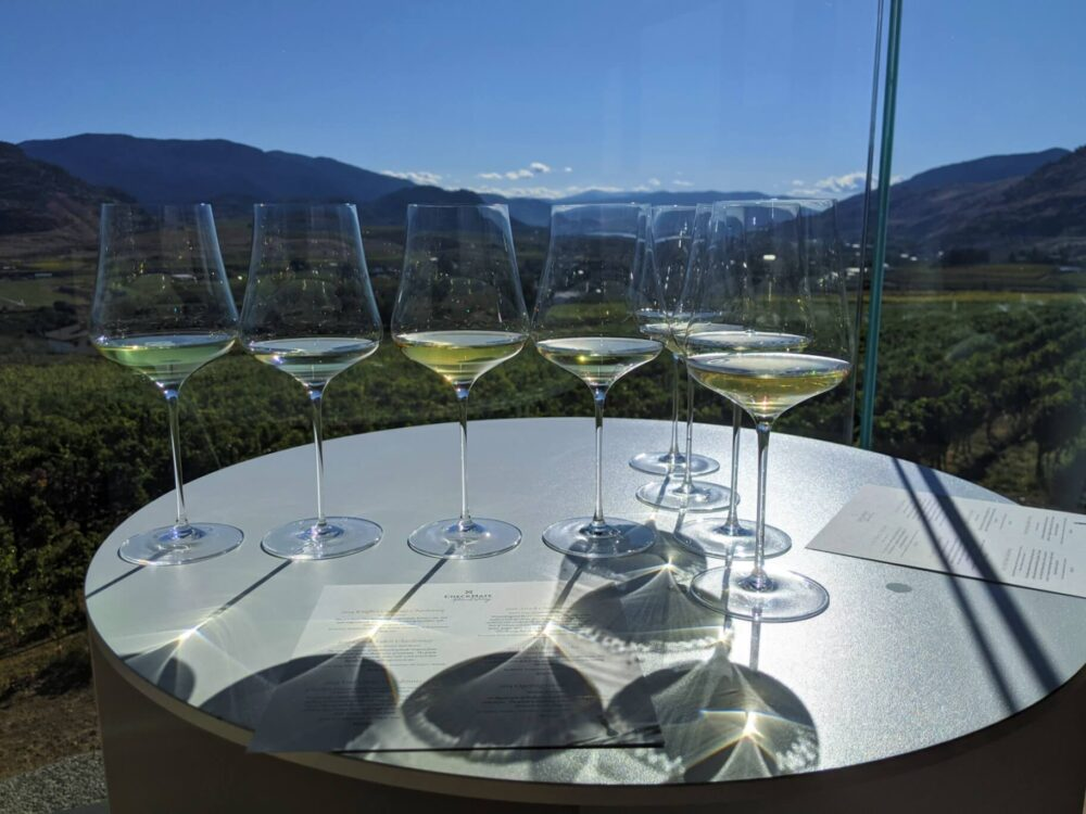Table view of eight glasses filled with white wine, in front of scenic view (shown through glass balcony)