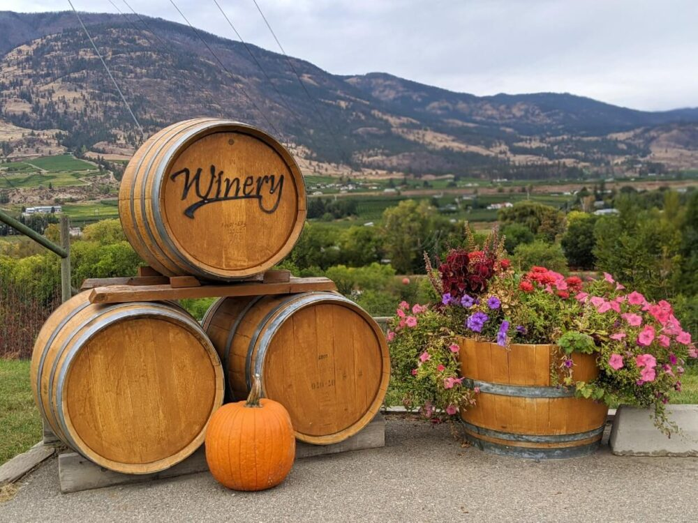 Three wine barrels next to pumpkin, with barrel of flowers on right, in front of rugged landscape in Osoyoos
