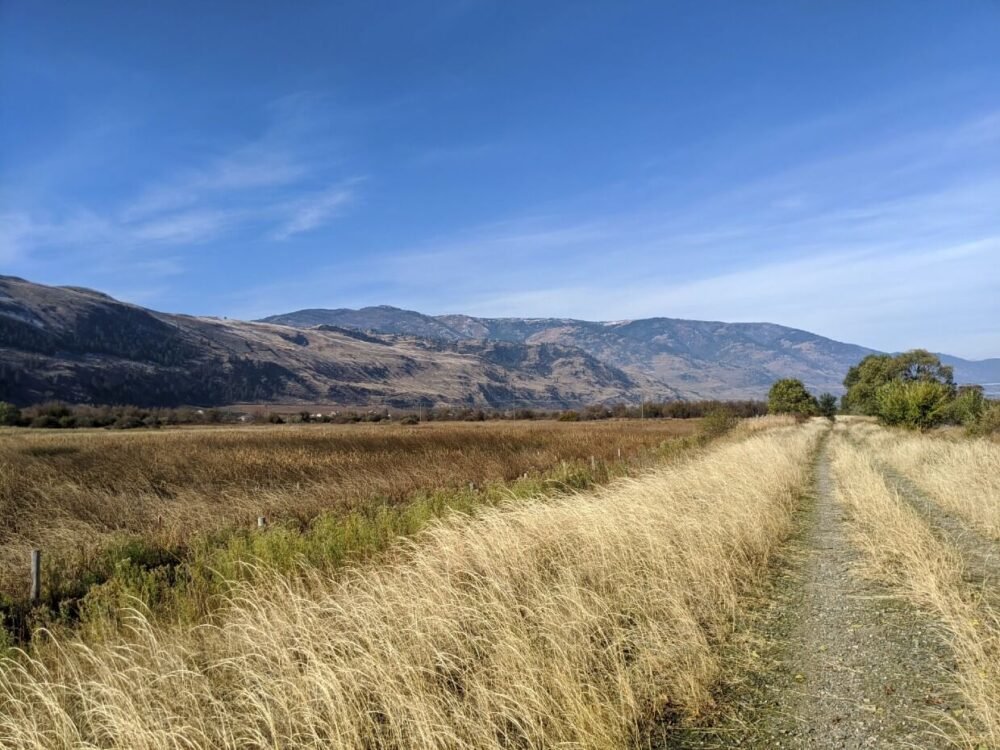 Looking ahead to dirt trail leading towards rugged mountain hills in Osoyoos