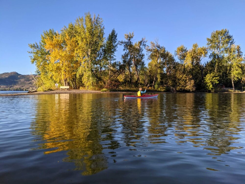 Kayak view towards another kayak paddling past point of land with yellowing trees