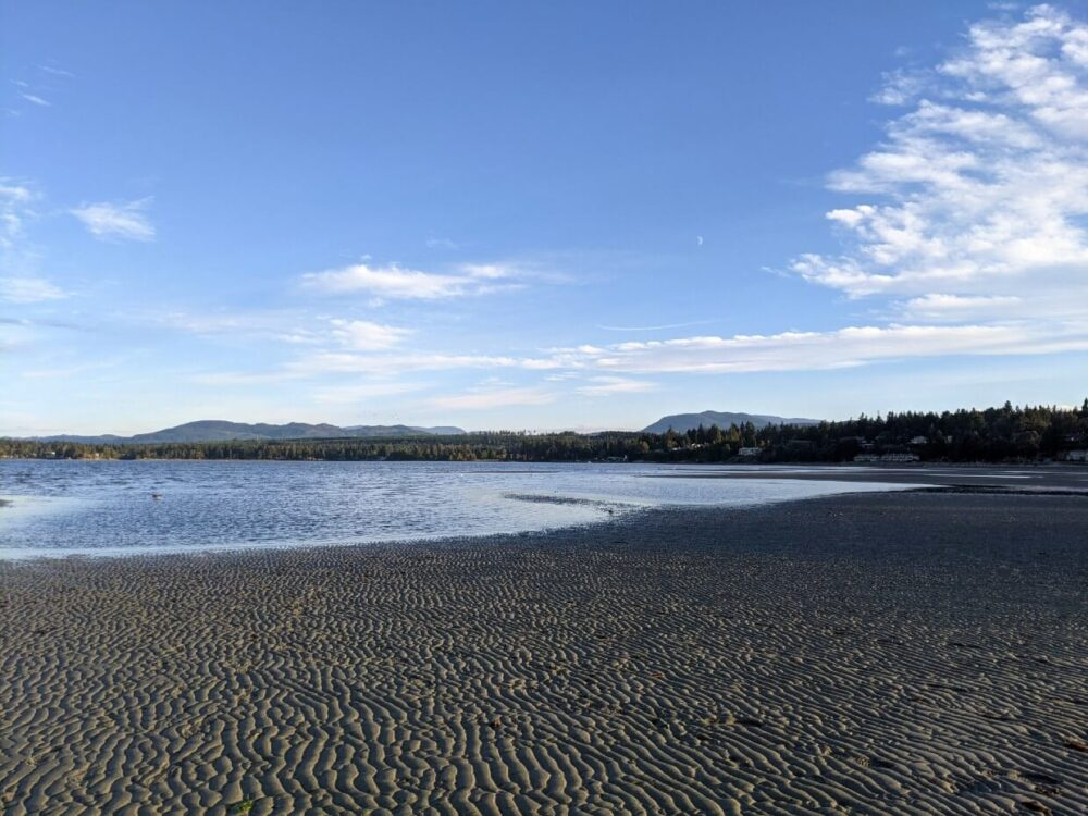 View across sandy beach (with tide out in Parksville towards forested residential area, with mountains visible behind
