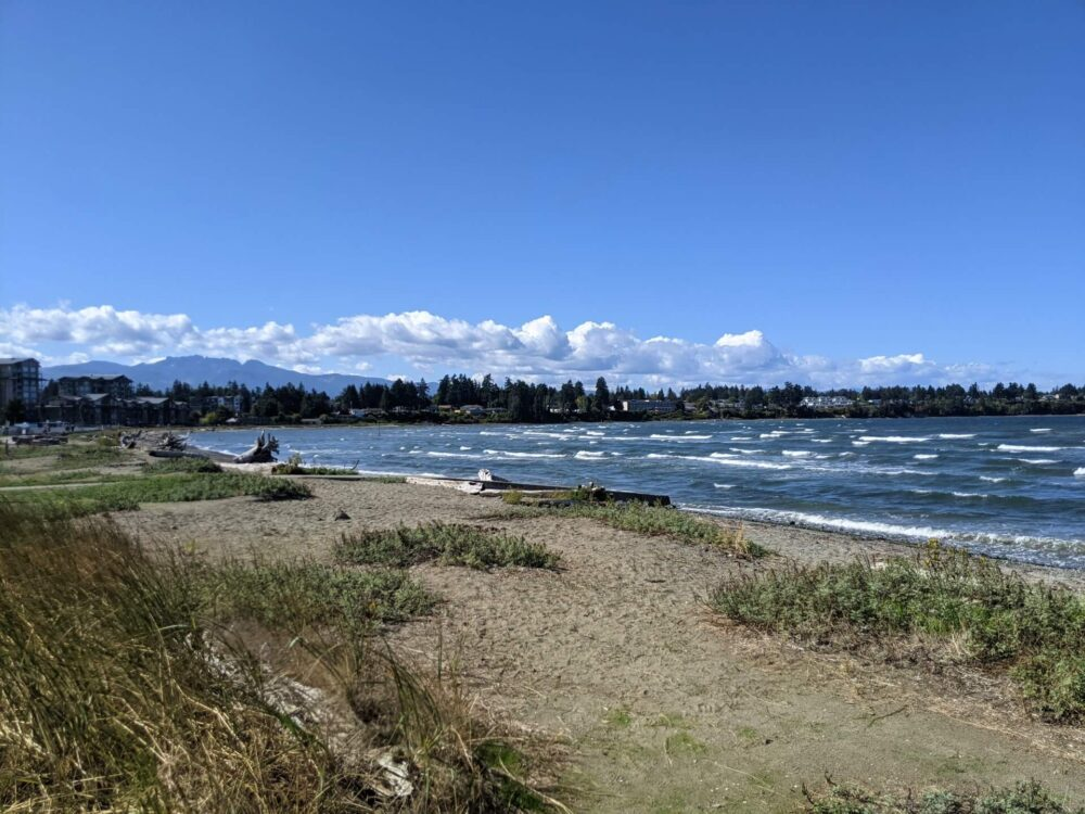 Looking across sandy and grass beach to windy ocean, with flats and houses visible on spit behind