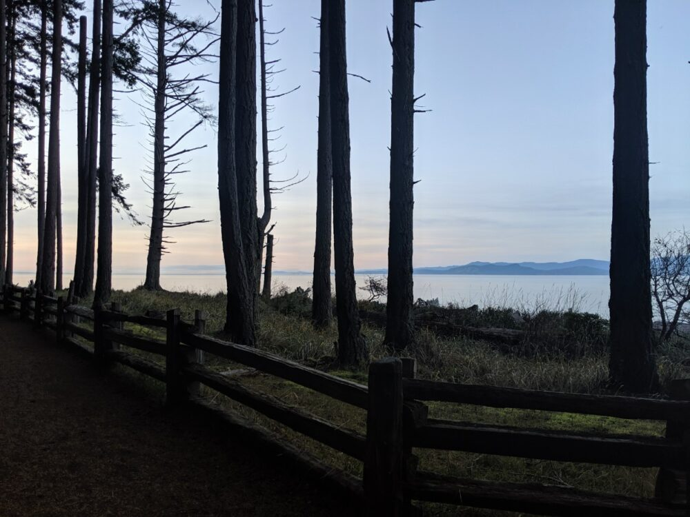 Looking through the tall trees at Rathtrevor Provincial Park campground towards ocean and mountain view